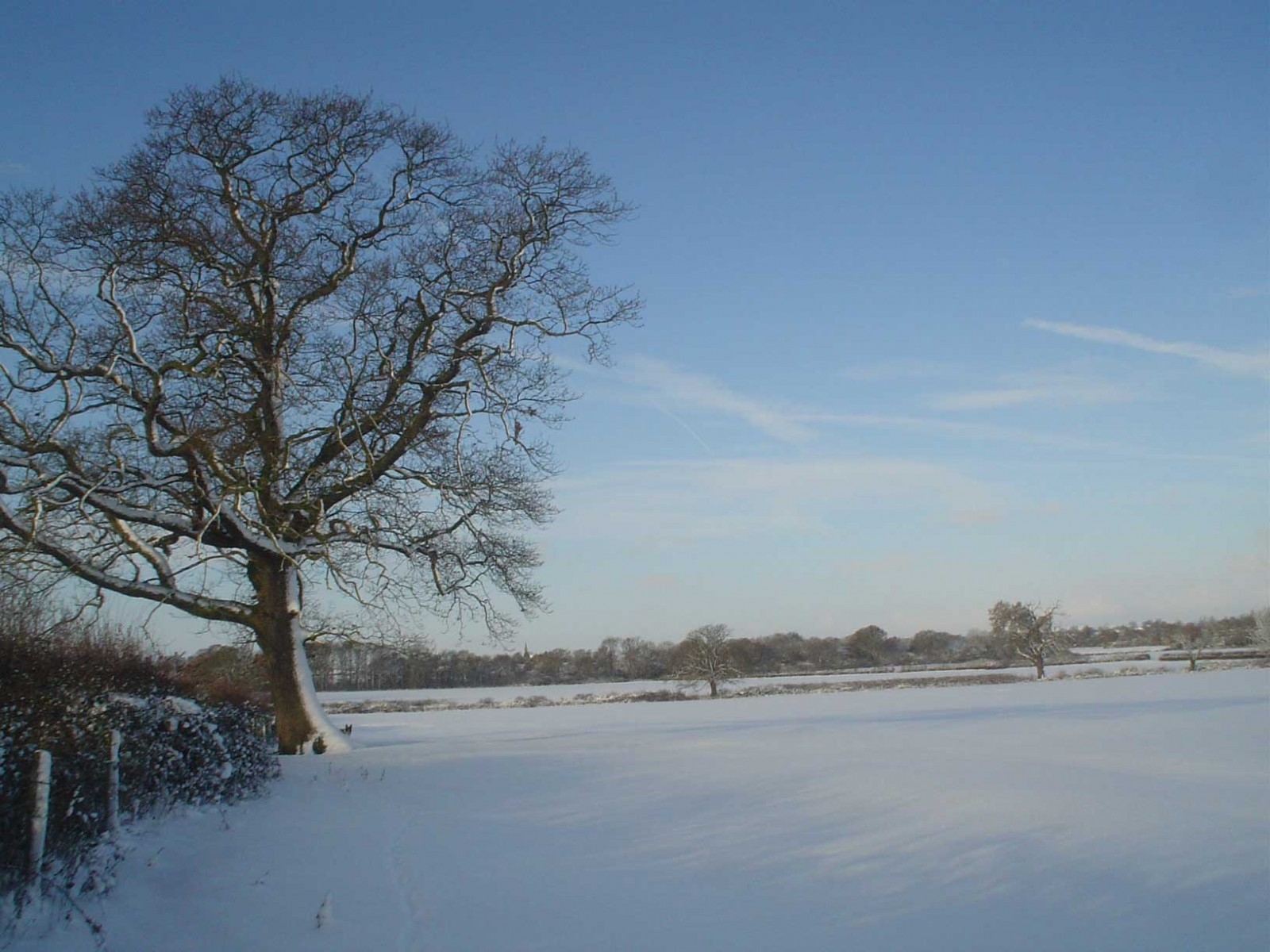 Baldfields Farm in the Snow